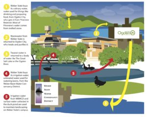 This graphic explains the water cycle on Weber State's campus. Yellow represents culinary water, red represents secondary irrigation water. (Stephanie Wells/ The Signpost)