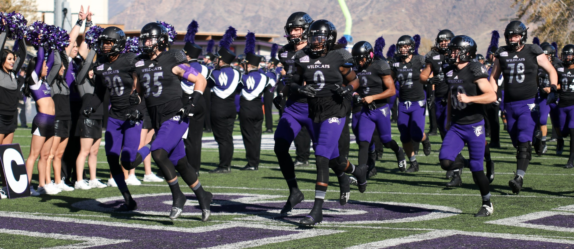 Cats Vs Dogs Weber State To Kick Off Football Season Signpost