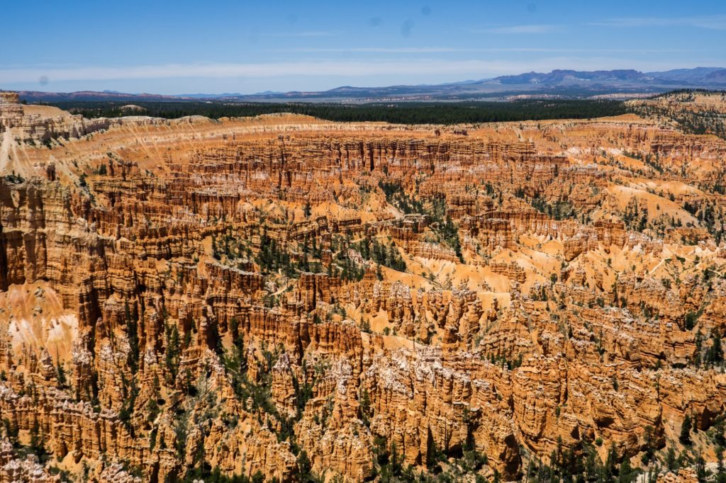 Bryce canyon is nestled within the mountains of Southern Utah. (Israel Campa/The Signpost)