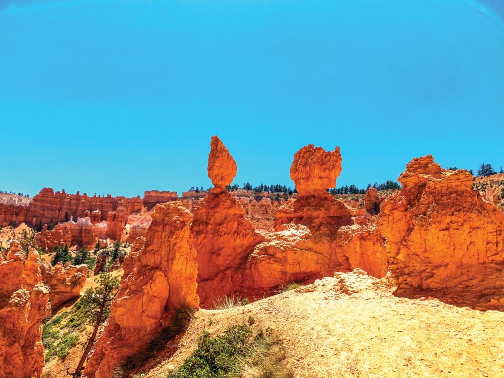 The blue sky and red rock give two different worlds. (Israel Campa/The Signpost)