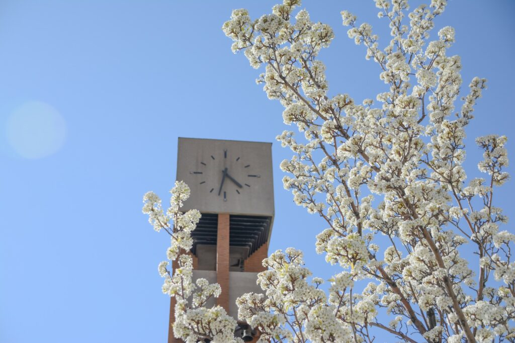 Weber State Bell Tower serves as a beacon on campus, and for the whole community, Monday, Apr. 12, 2021 on Weber State University Campus. (Brooklynn Kilgore/The Signpost)