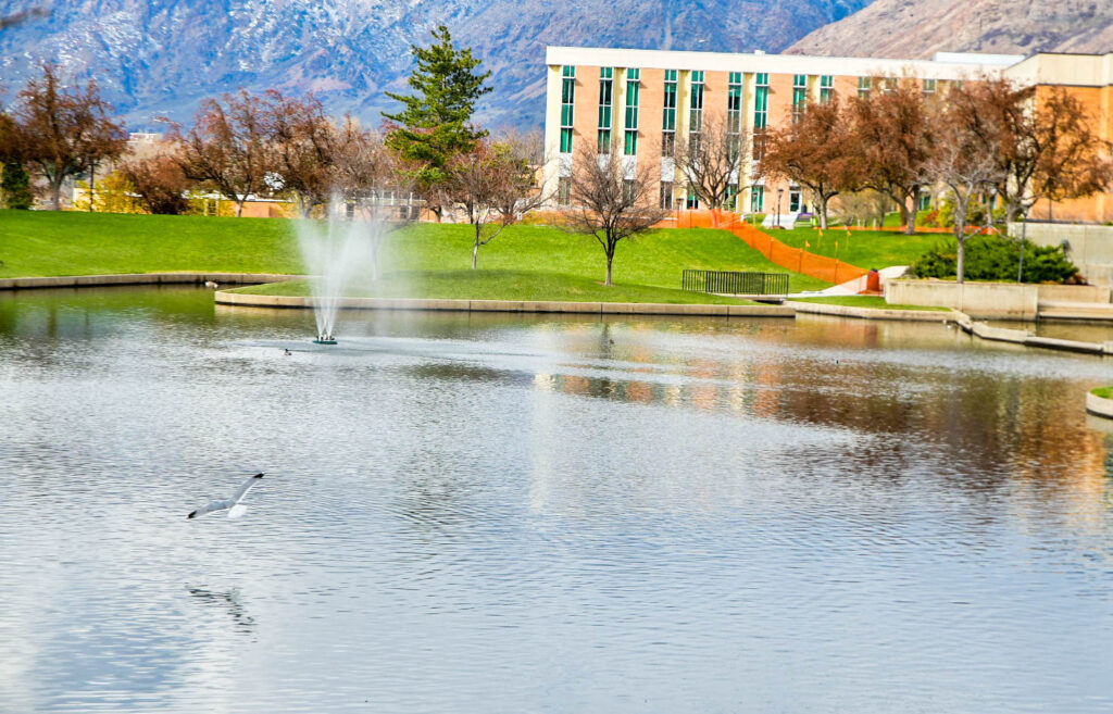 The duck pond is an often sought after place for students to sit and relax outdoors on campus. (Nikki Dorber/The Signpost)