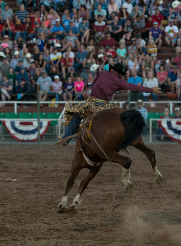 Bronc riding, where contestants attempt to ride a bucking horse for a set amount of time. (Signpost Archives)